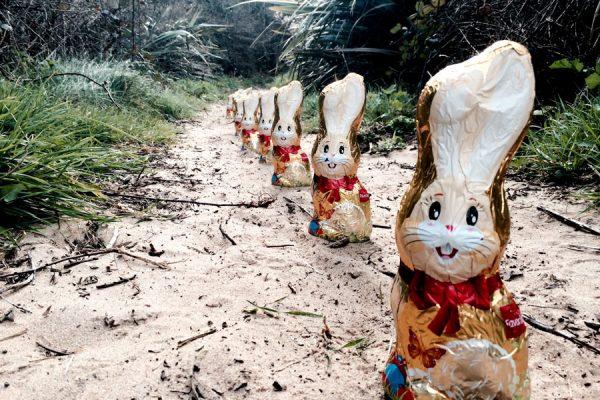 morriscastle strand events easter hunt